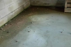 Inondation sol maison TOP DUO